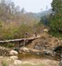 Eliminator Mountain Biking in Doi Chiang Dao Park (Departure from Chiang Mai)