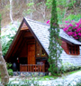 Krisdadoi Chiangmai Aprime Resort
