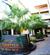 P.P. Palmtree Resort Krabi