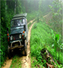 Samui  Eco  Adventure